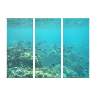 Underwater tropical fish scene canvas