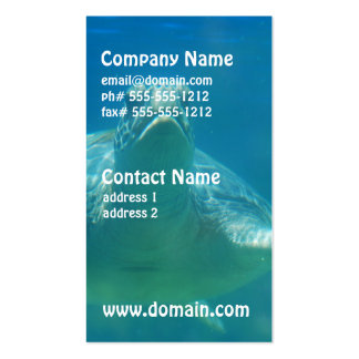 Underwater Turtle Business Cards