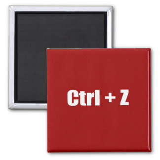 Undo - CTRL + Z Magnet