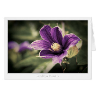 Unfolding Clematis Card