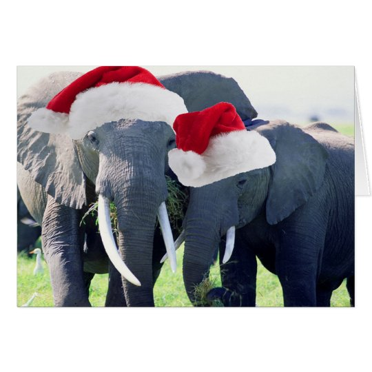 Unforgettable Elephant Christmas Card