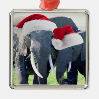 Unforgettable Elephant Christmas Christmas Ornament
