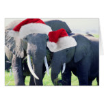 Unforgettable Elephant Christmas Greeting Card
