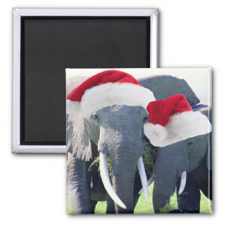 Unforgettable Elephant Christmas Square Magnet
