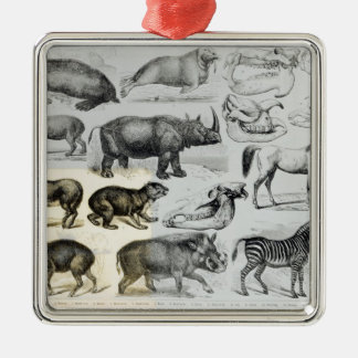 Ungulata or Hoofed Animals Christmas Ornament