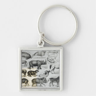 Ungulata or Hoofed Animals Key Ring
