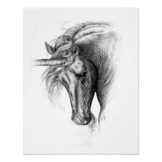 Unicorn Colt Poster