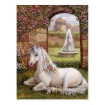 Unicorn Garden Post Card