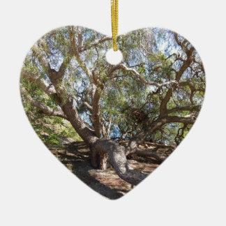 Unidentified Tree on the California Coast Christmas Ornament