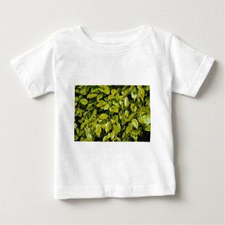 Unique Beech leaf T Shirt