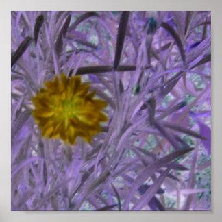 Unique Expoxed Floral Poster