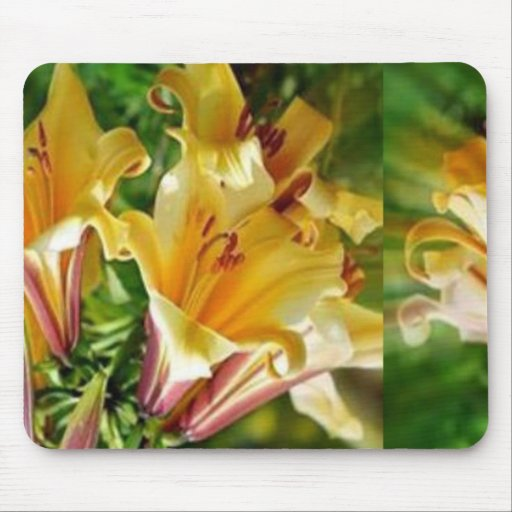 Unique Floral Greetings: Fresh Golden Exotic Wild Mouse Pads