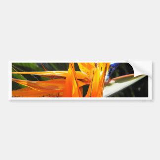 Unique Flower Bumper Sticker