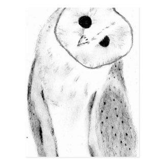 Unique Hand Drawn Barn Owl Postcard