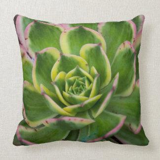 Unique Macro Cactus Center Throw Pillow