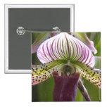 Unique Orchid Button