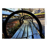 Unique Park Bench in Central Park, NYC
