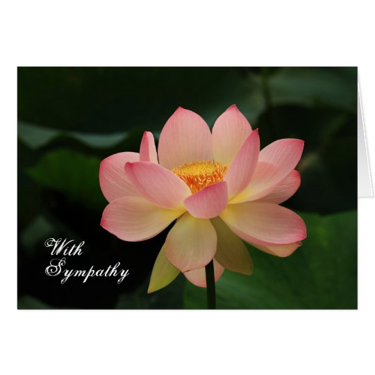 Unique Pink Lotus Floral Buddhist Sympathy Card
