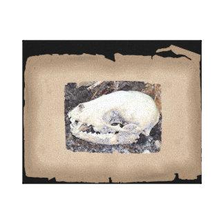 Unique sepia raccoon skull canvas print
