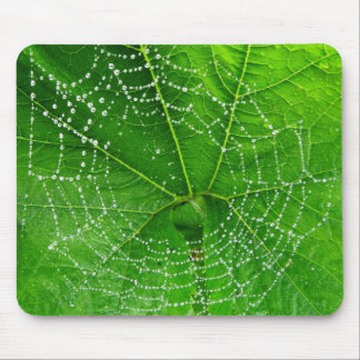 Unique Spiders Web Photo Designed Computer Mouse Mat