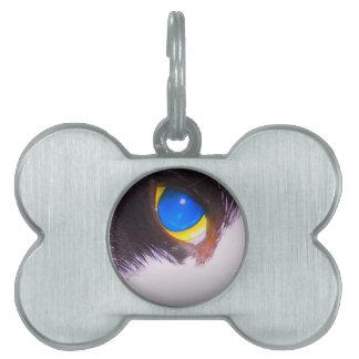Unique Trendy Modern Eye Catching design Pet Name Tag