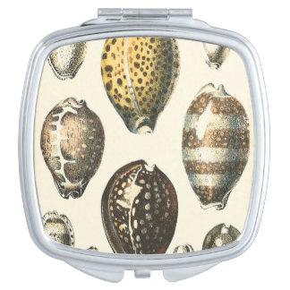 Uniquely Shaped Seashells Compact Mirrors