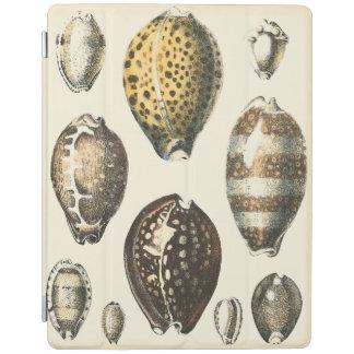 Uniquely Shaped Seashells iPad Cover