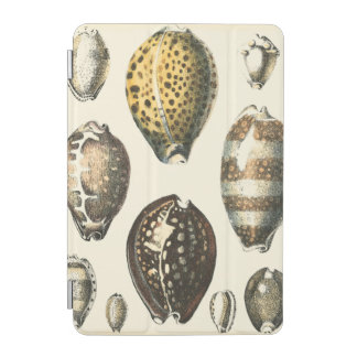 Uniquely Shaped Seashells iPad Mini Cover