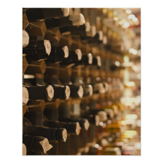 United Kingdom, Bristol, old wine bottles on Poster