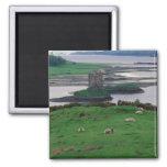 United Kingdom, Scotland, Isle of Skye, old Fridge Magnets