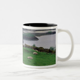 United Kingdom, Scotland, Isle of Skye, old Coffee Mugs