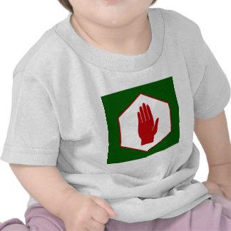 United Northern Ireland Emblem flag T-shirts