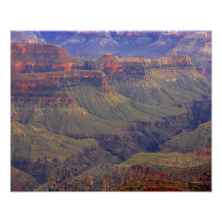 United States, Arizona, Grand Canyon National Poster