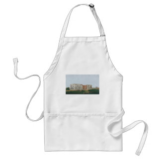United States Capitol Building Being Rebuilt 1814 Standard Apron