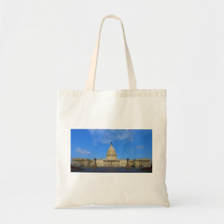 United States Capitol Building East Side Bags