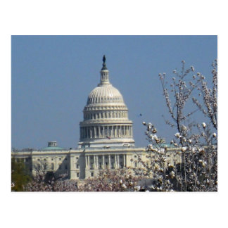 United States Capitol Building Washington DC 002 Postcard