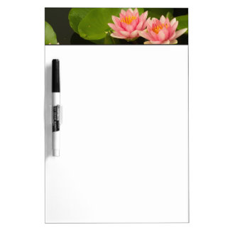 United States, DC, Washington, Kenilworth 4 Dry Erase Board