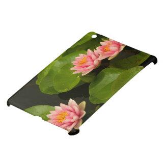 United States, DC, Washington, Kenilworth 4 iPad Mini Cover