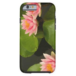 United States, DC, Washington, Kenilworth 4 Tough iPhone 6 Case