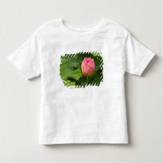 United States, DC, Washington, Kenilworth Toddler T-Shirt