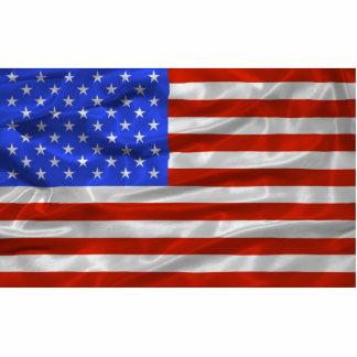 United States Flag Magnet Photo Sculpture Magnet