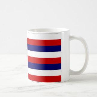 United States Hawaii Flag Basic White Mug