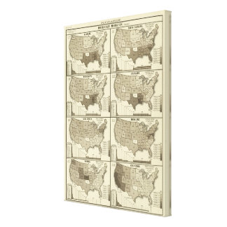 United States lithographed maps Canvas Print