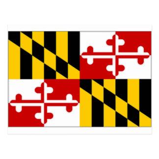 United States Maryland Flag Postcard