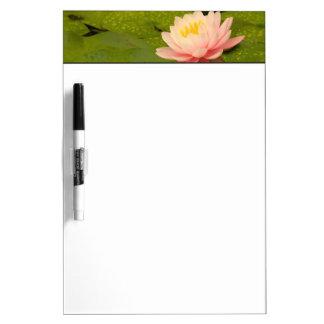 United States, Maryland, Westminster, Union 2 Dry Erase Whiteboards