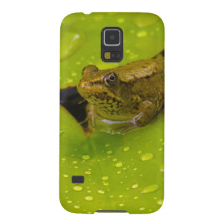 United States, Maryland, Westminster, Union 2 Galaxy S5 Cover