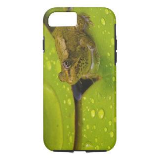 United States, Maryland, Westminster, Union 2 iPhone 7 Case