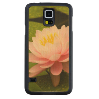 United States, Maryland, Westminster, Union 2 Maple Galaxy S5 Slim Case