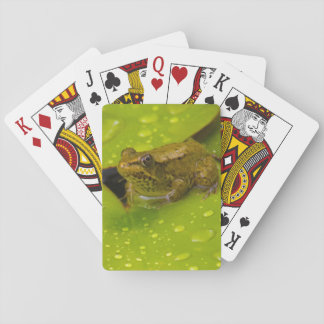 United States, Maryland, Westminster, Union 2 Playing Cards