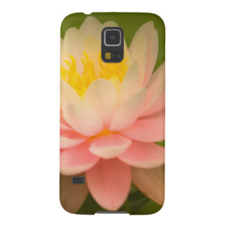 United States, Maryland, Westminster, Union Cases For Galaxy S5